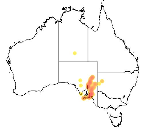 distribution map showing range of Ctenophorus decresii in Australia