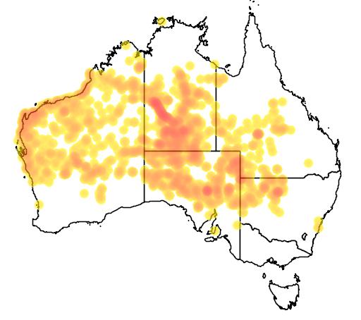 distribution map showing range of Ctenophorus nuchalis in Australia
