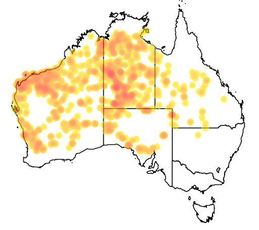 distribution map showing range of Ctenotus pantherinus in Australia