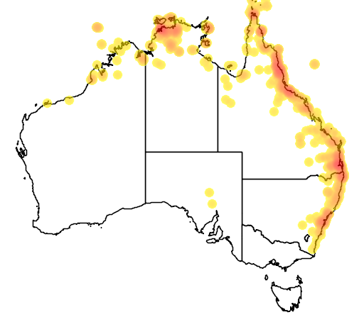 distribution map showing range of Cuculus optatus in Australia