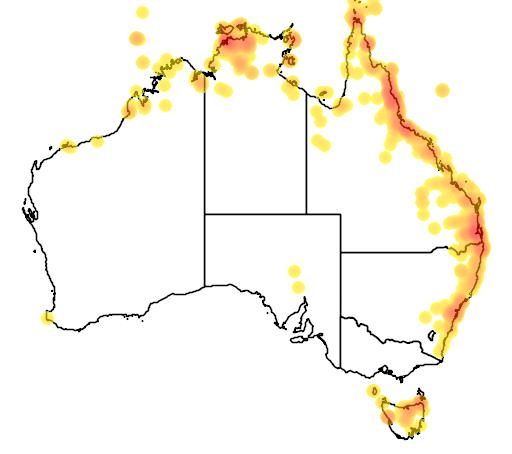 distribution map showing range of Cuculus pyrrhophanus in Australia
