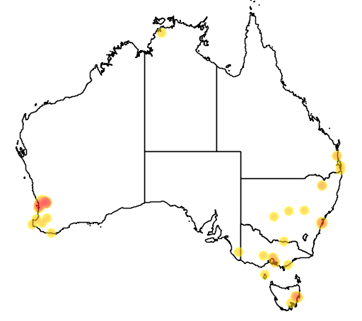 distribution map showing range of Cygnus olor in Australia