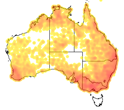 distribution map showing range of Daphoenositta chrysoptera in Australia