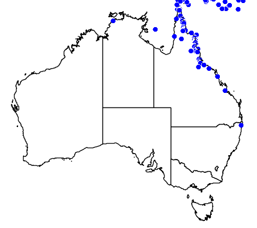 distribution map showing range of Dendrelaphis calligastra in Australia