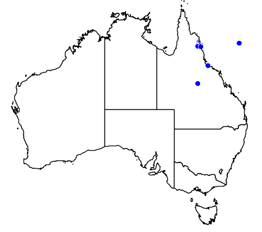 distribution map showing range of Dendrolagus bennettianus in Australia