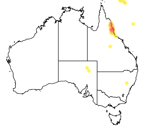 distribution map showing range of Dendrolagus goodfellowi in Australia