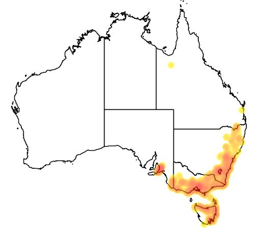 distribution map showing range of Dipodium roseum in Australia