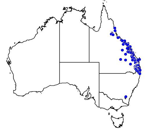 distribution map showing range of Dockrillia bowmanii in Australia