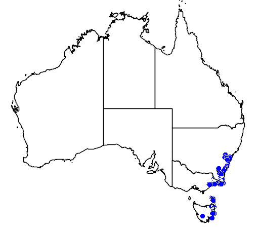 distribution map showing range of Dockrillia striolata in Australia
