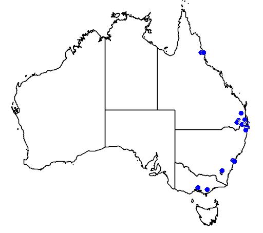 distribution map showing range of Doryanthes palmeri in Australia