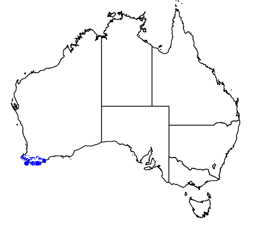 distribution map showing range of Drakaea thynniphila in Australia