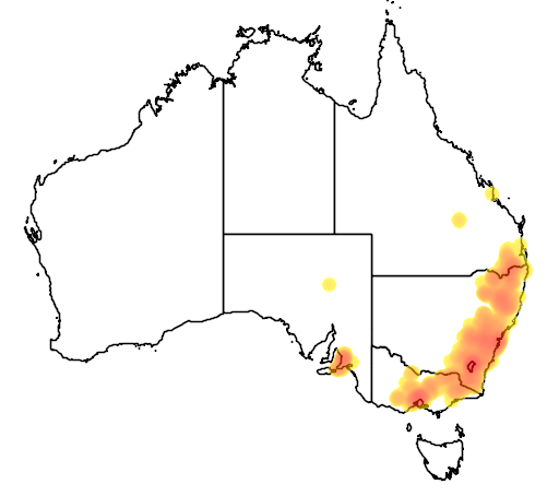 distribution map showing range of Egernia cunninghami in Australia
