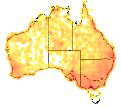 distribution map showing range of Elanus axillaris in Australia