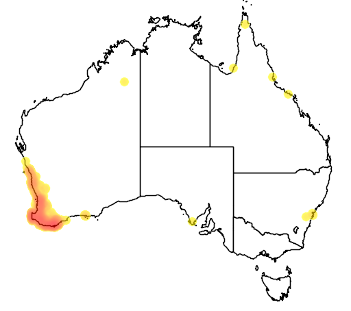 distribution map showing range of Eopsaltria georgiana in Australia