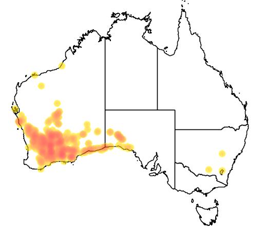 distribution map showing range of Eremophila decipiens in Australia