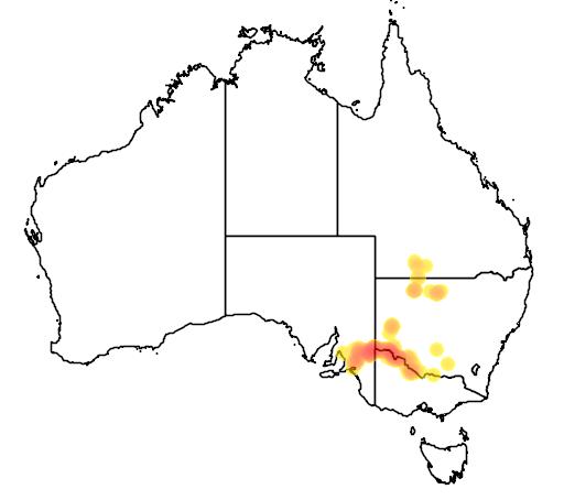 distribution map showing range of Eremophila divaricata in Australia