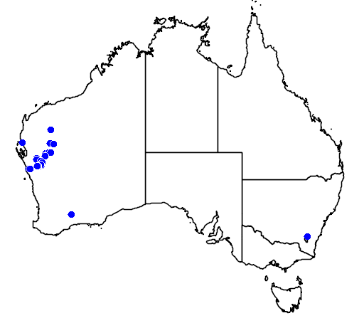 distribution map showing range of Eremophila laanii in Australia
