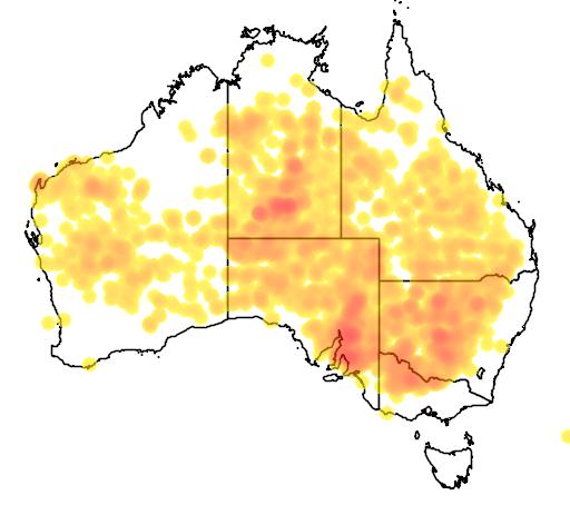 distribution map showing range of Eremophila longifolia in Australia