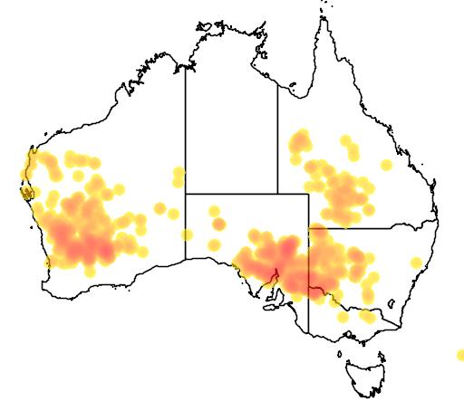 distribution map showing range of Eremophila oppositifolia in Australia