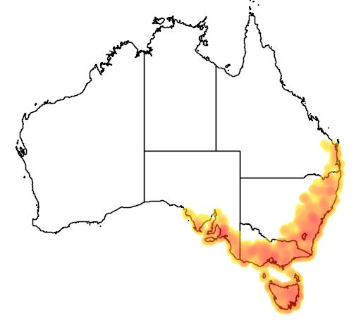 distribution map showing range of Eriochilus cucullatus in Australia