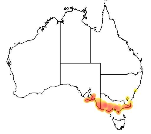 distribution map showing range of Eucalyptus baxteri in Australia