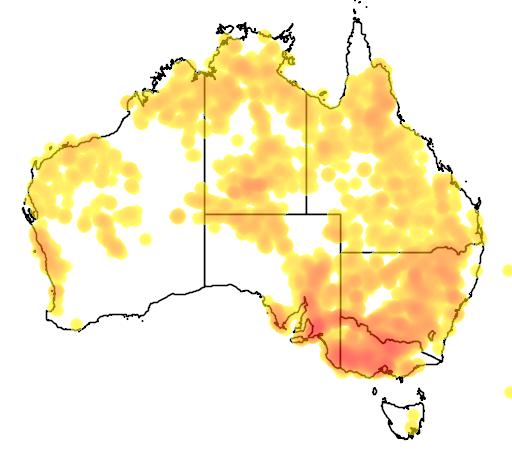 distribution map showing range of Eucalyptus camaldulensis in Australia