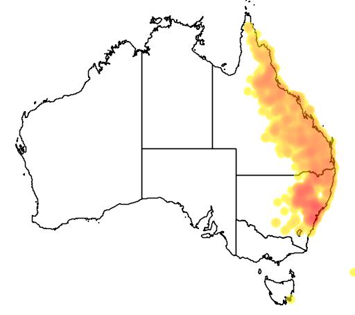 distribution map showing range of Eucalyptus crebra in Australia