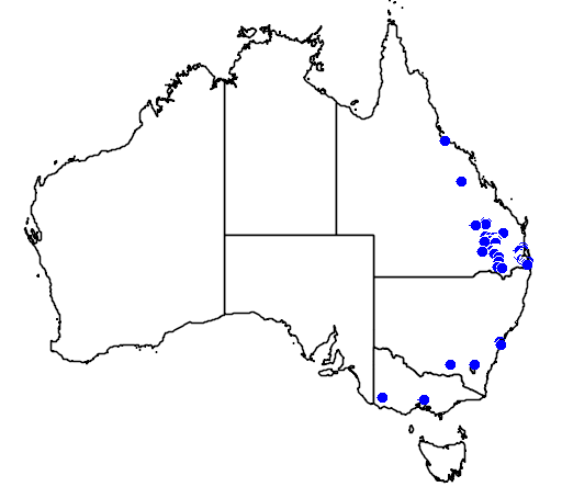 distribution map showing range of Eucalyptus curtisii in Australia