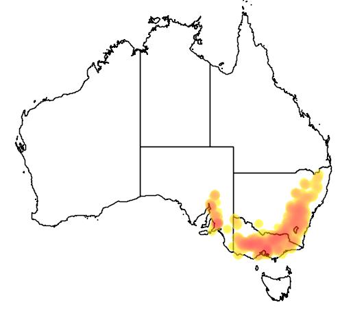 distribution map showing range of Eucalyptus goniocalyx in Australia