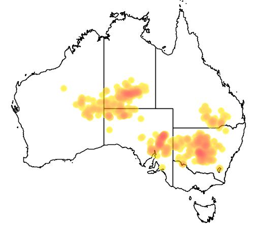 distribution map showing range of Eucalyptus intertexta in Australia