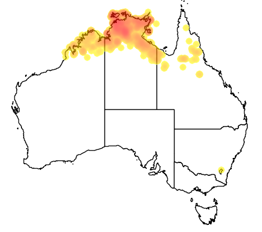 distribution map showing range of Eucalyptus miniata in Australia