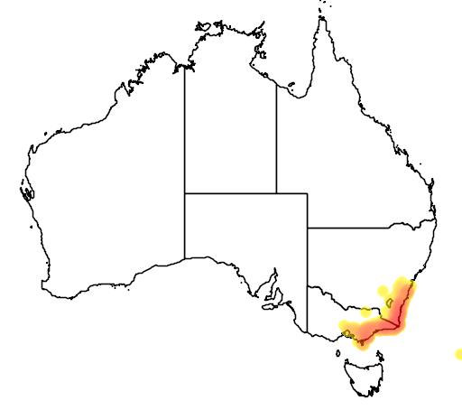 distribution map showing range of Eucalyptus muelleriana in Australia
