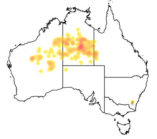 distribution map showing range of Eucalyptus pachyphylla in Australia