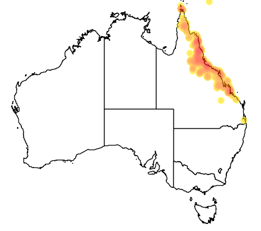 distribution map showing range of Eucalyptus platyphylla in Australia