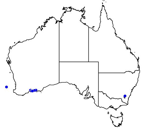 distribution map showing range of Eucalyptus preissiana in Australia