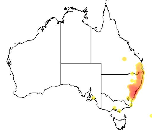 distribution map showing range of Eucalyptus punctata in Australia