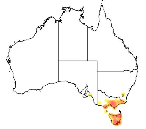 distribution map showing range of Eucalyptus regnans in Australia