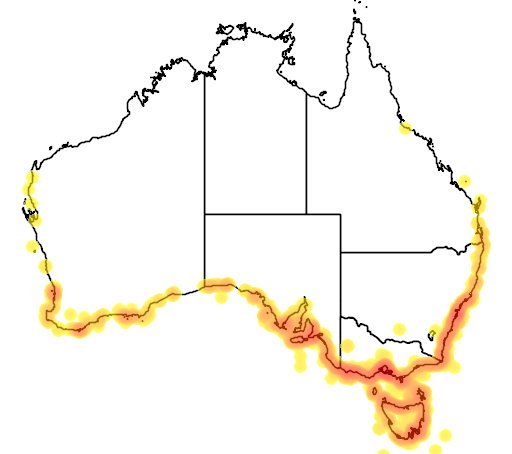 distribution map showing range of Eudyptula minor in Australia
