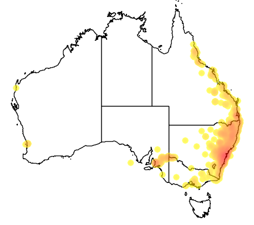 distribution map showing range of Eulamprus quoyii in Australia