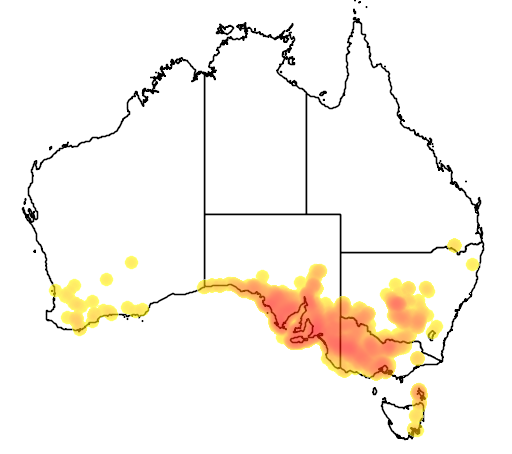 distribution map showing range of Eutaxia microphylla in Australia