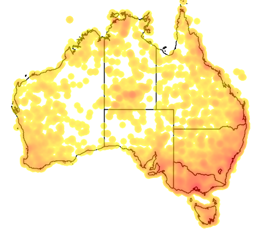 distribution map showing range of Falco peregrinus in Australia