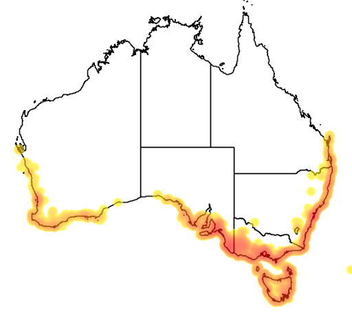 distribution map showing range of Ficinia nodosa in Australia