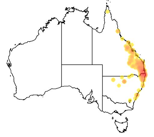 distribution map showing range of Flindersia australis in Australia