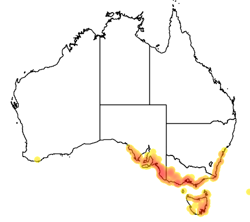 distribution map showing range of Gahnia filum in Australia