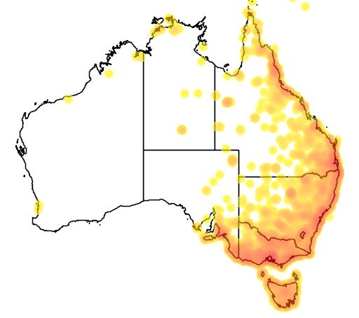 distribution map showing range of Gallinago hardwickii in Australia