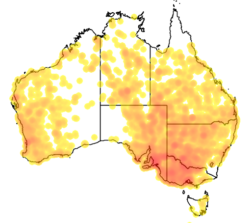 distribution map showing range of Gallinula ventralis in Australia