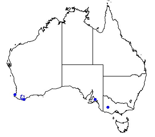 distribution map showing range of Gastrolobium minus in Australia