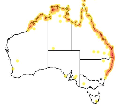 distribution map showing range of Gerygone levigaster in Australia
