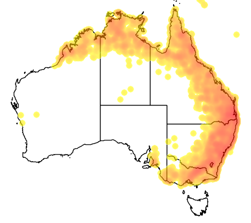 distribution map showing range of Gerygone olivacea in Australia