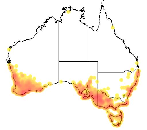 distribution map showing range of Gliciphila melanops in Australia